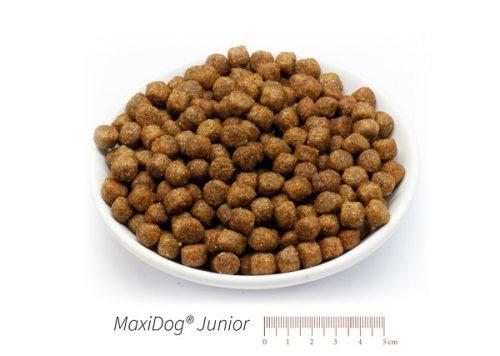 cibo cani secco crocchette reico maxidog junior • Cuccioli&Crocchette, Reico Partner | Sano. Naturale. Minerale.